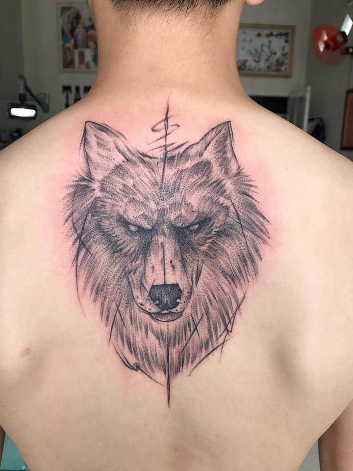 hinh xam sói